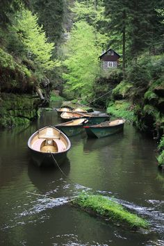 Soutěsky Kamenice/Gorge of the River Kamenice, Bohemian Switzerland, Czechia Places To Travel, Places To Visit, Prague Czech Republic, Cottage In The Woods, Beautiful Places In The World, Places Of Interest, Hiking Routes, Ciel, Countryside