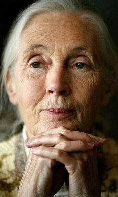 JANE GOODALL - An Absolutely Amazing Human Being & Beautiful Soul