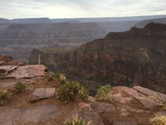 Grand Canyon West Rim, Nature, Travel, Naturaleza, Viajes, Destinations, Traveling, Trips, Nature Illustration