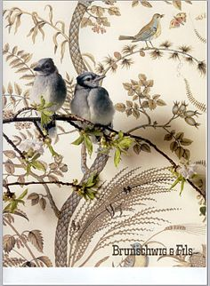 birds wall covering