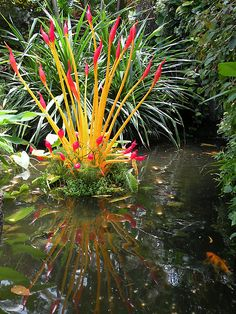 Annie's Pond (with Chihuly glass and koi) by WonderlandGlass