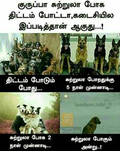 Comedy Quotes, Funny Comedy, Tamil Funny Memes, Funny Images, Jokes, Positivity, Lol, Thoughts, Humor