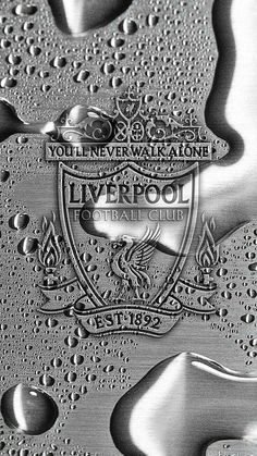 Sports Discover Sports Mira A Eisenhower Liverpool Fc Shirt Liverpool Anfield Liverpool Players Liverpool Fans Liverpool Football Club Liverpool Wallpapers Liverpool Fc Wallpaper Free Football Football Doodle Liverpool Fc Badge, Anfield Liverpool, Liverpool Players, Liverpool Fans, Liverpool Football Club, Lfc Wallpaper, Liverpool Fc Wallpaper, Liverpool Wallpapers, Free Football