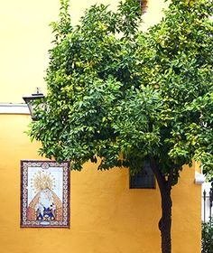 Slide 4 - What's Hot in Seville | Travel + Leisure