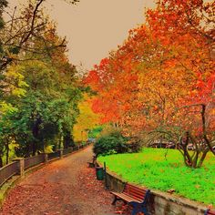 Tramonti autunnali... #bologna #autunno Photo by ariannabologna  http://instagram.com/p/SI11VZLXBp/