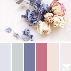 today's *gorgeous* inspiration photo for { dried hues } is by @ofheartandhome (if you haven't clicked over to follow her incredible feed ... do yourself a favor & do so now) ... thank you Bec ~ i appreciate your generously sharing your work in #SeedsColor !