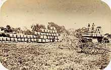 This is a great website to look at traditional farming methods in Australian history and links with Draft Australian Curriculum Technologies in recognising the contribution of food and fibre production make to modern and traditional societies Middle School History, History Class, Teaching History, Homeschooling Resources, School Resources, Australian Money, Design Tech, Food Technology, Primary Science