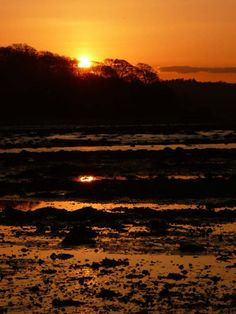 Cramond Sunset 007 Elements by Nik Watt