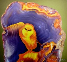 The Apache Owl - 9 cm Agate slice The most expensive picture agate ever Mascot at the Munich Show Classic Rocks Geology Wonders Cool Rocks, Beautiful Rocks, Minerals And Gemstones, Rocks And Minerals, Rocks And Gems, Stones And Crystals, Gem Stones, Agates, Land Art