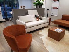 Brühl Sofastudio by Sofabed Couch, Studio, Design, Furniture, Home Decor, Mannheim, World, Homemade Home Decor