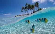 Indonesia | Islands | Beach | Holiday | Vacation | Bali | Manado | Lombok