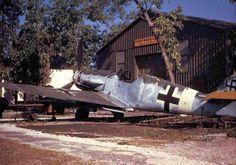 Bf-109F4-Trop-1.JG3-(W12+)-captured - WAR HISTORY ONLINE