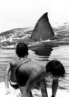 Jaws....i live here....and this is my nightmare.....