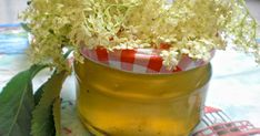 Holunderblütengelee mit Orangensaft  - Rezept | DasKochrezept.de