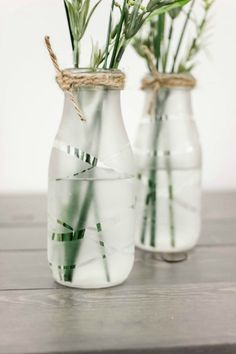 DIY Glass-Etched Vases Upcycle some old milk bottles or glass containers into these beautiful and chic Glass Etched Vases! The post DIY Glass-Etched Vases appeared first on Glas ideen. Starbucks Glass Bottle Crafts, Starbucks Bottles, Wine Glass Crafts, Wine Bottle Crafts, Crafts With Glass Bottles, Jar Crafts, Old Milk Bottles, Garrafa Diy, Diy Bottle