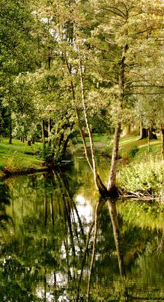 Haaksbergen NL, park with pond. (by: harry eppink)