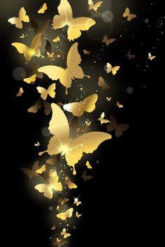 Mariposas butterflies                                                                                                                                                                                 Más