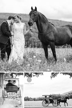 bride and groom with horse on their wedding day in Saratoga Springs NY | horse drawn carriage at wedding