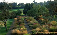 border of perennials and ornamental grasses at Crockmore House, Oxfordshire, UK, by Bradley-Hole Schoenaich Landscape Architects