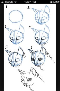 Cat drawing #2