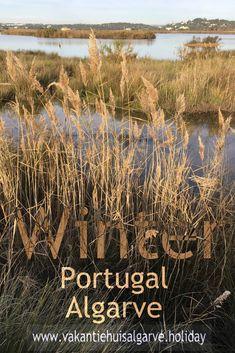 De Salgados Lagoon, ook bekend als Pêra Marsh, is een van de belangrijkste zoetwater gebieden in de Algarve en wordt het hele jaar door bewoond door meer dan 160 vogelsoorten. Het gebied staat op de nationale lijst van belangrijke vogelgebieden en is een van de wetlands die het meest bezocht wordt door natuurliefhebbers om te wandelen en vogels te spotten. #Portugal #Algarve #Overwinteren #SuninWinter #SalgadosLagoon #PeraMarsh Algarve, Portugal, All Over The World, Travel Inspiration, Travel Destinations, Travel Tips, Beautiful Places, Blog, Road Trip Destinations