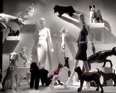 """Bergdorf Goodman NY, """"The Best In Show"""", Find dog mannequins for sale at Mannequin Madness"""