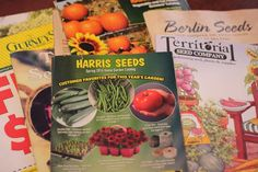 The last month has been like Christmas for me! After requesting more seed catalogs this winter than any previous years, the seeds finally started arriving in the mail. Plus,Lowell is maki…