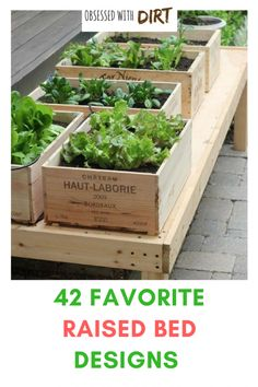 Raised Garden beds are considered one of the most effective gardening techniques due to the numerous advantages they present. The main reason they are so popular is due to space saving benefit. Multiple types of plants can be grown beside one another with Fenced Vegetable Garden, Vegetable Garden Design, Raised Garden Beds, Raised Beds, Raised Gardens, Succulent Gardening, Organic Gardening, Container Gardening Vegetables, Easy Garden