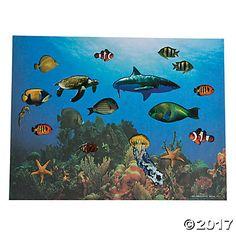 Realistic Under the Sea Sticker Scenes