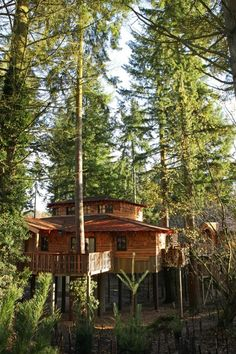 #cpfamilybreaks who wouldn't love a holiday in a tree house style cabin @tots100