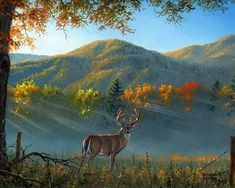 Hunter Page, Creation Photo, Mountain Wallpaper, Animation, Beautiful Paintings, Painting Inspiration, Moose Art, Art Gallery, Mountains