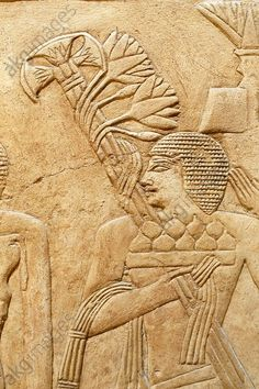Saqqara (Middle Egypt), Tomb of Kagemni – Mastaba 25 (Mastaba of the vizier Kagemni; Old Kingdom, early 6th dynasty, after 2347 BC).  Sacrificial procession, detail: man carrying a bowl of figs and a bouquet of papyrus and lotus. Detail from relief with daily life and sacrificial scenes. Chamber 2, North Wall. Hervé Champollion