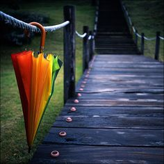 rainbow umbrella #5 by yein~, via Flickr