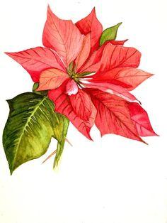 Poinsettia  Painting by Garima Srivastava