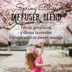Spring Bliss Diffuser Blend-- This is a wonderful combination of essential oils that work together to uplift, relax, and recharge!! * geranium uplifts mood in the room and generally just makes everyone happy * lavender is calming and relaxing * sweet/wild orange is an adaptogen that can be both calming as well as energizing CLICK for 15 more spring diffuser blends as well as a FREE PRINTABLE of all the recipes