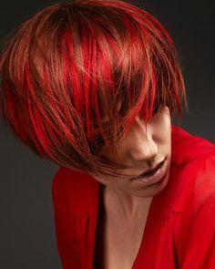 8 Looks. 8 Color Formulas by Anne Veck | Modern Salon #haircolor