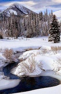 cielo, nubes, montaña, árboles, arbustos, nieve,hielo, agua...