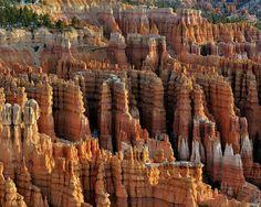 Those Hoodoo's. Bryce Canyon Photograph by John Rav