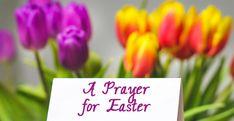 An Easter Prayer | Easter Holy Saturday, Holy Thursday, Easter Prayers, Easter Wishes, Easter History, Easter Jokes, Holy Week Prayer, Happy Easter Quotes, Christian Calendar