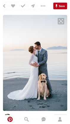 #DogsinWeddingsIdeas