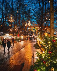 Things To Do In Switzerland In Winter Christmas Feeling, Cozy Christmas, Christmas Lights, Christmas Time, Christmas Markets, Xmas, Christmas Travel, Nouvel An, Christmas Aesthetic