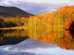 """Adirondack Reflections - wetlands near Tupper Lake"" by Johnathan Esper"