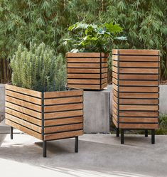 Jasper Wide Planter | Rejuvenation