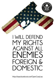 That includes my own government if they try to take my guns or rights from me! The second amendment is there to protect all of us here in the USA. Don't sit back and let them take that right away from you I won't. Pistol Packing Momma!