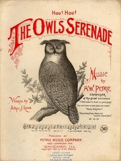 The Owls Serenade.by Lamb/Petrie[1891] Soft thro' the summer's night came the other's answer meek;  I love your feathers white and your pretty beak.  When you flap each little wing, when your bright eyes roll so,  As upon the branch you swing, you look sweet, I trow;  Vow by the moon above, and the forest's deepest shade,  That you mean truest love by your serenade.