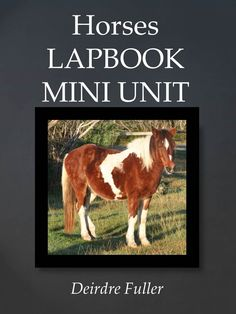 Free Horse Unit Study Resources - Something 2 OfferSomething 2 Offer