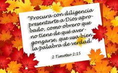 ¡Somos llamados a estudiar la palabra de Dios con diligencia!