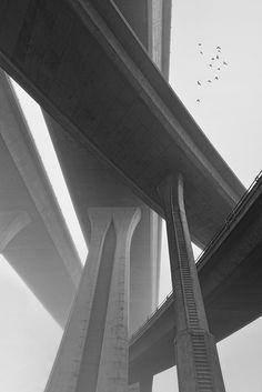 Concrete Pacyderm by Lee Sie.
