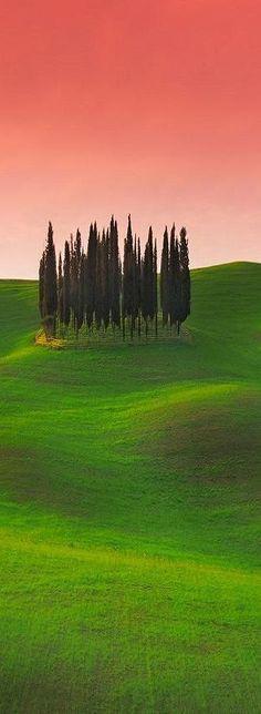 Tuscany, Italy                                                       …                                                                                                                                                                                 More