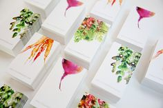 Watercolor Veggies for Holli Thompson branding :Client: Holli ThompsonCreative Direction: Jennifer Elsner, Viewers Like YouPhoto: Chelsea Fullerton, Go Forth Creative